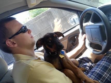 Jack Daniel - What's My Puppy?